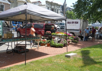 Fresh flowers at the Centreville Farmers' Market
